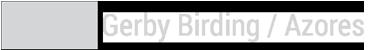 Gerby Birding